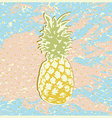 Pineapple2 vector image