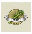 celery vintage set of labels emblems or logo for vector image