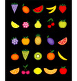 energy fruits vector image vector image
