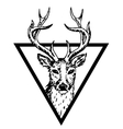 hipster logo with deer vector image