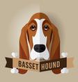 basset hound vector image