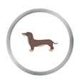 Dachshund icon in cartoon style for web vector image