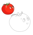 Educational game connect dots draw tomato vector image