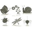 isolated icons of insects vector image vector image