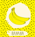 Banana hand drawn sketched fruit with leaf on vector image