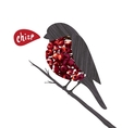 Bullfinch Sitting on Ashberry Twig Saying Chirp vector image