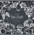 vintage fruits card design on chalkboard vector image