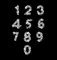 Number from bones anatomy numbers skull and spine vector image