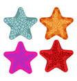 Set colored starfish Animals of ocean vector image