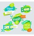 Set of healthy organic food labels vector image