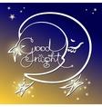 Good night of handwritten vector image