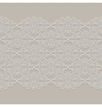 Lace ribbon Seamless Pattern vector image