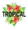 abstract triangle tropical background vector image