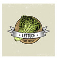 lettuce vintage set of labels emblems or logo for vector image
