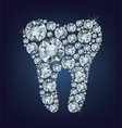 Tooth made up a lot of diamonds vector image