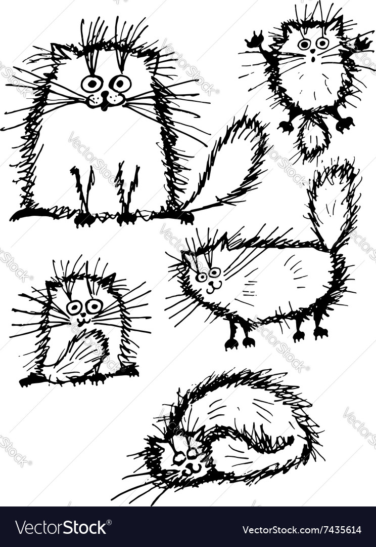 Fluffy white cats collection sketch for your vector