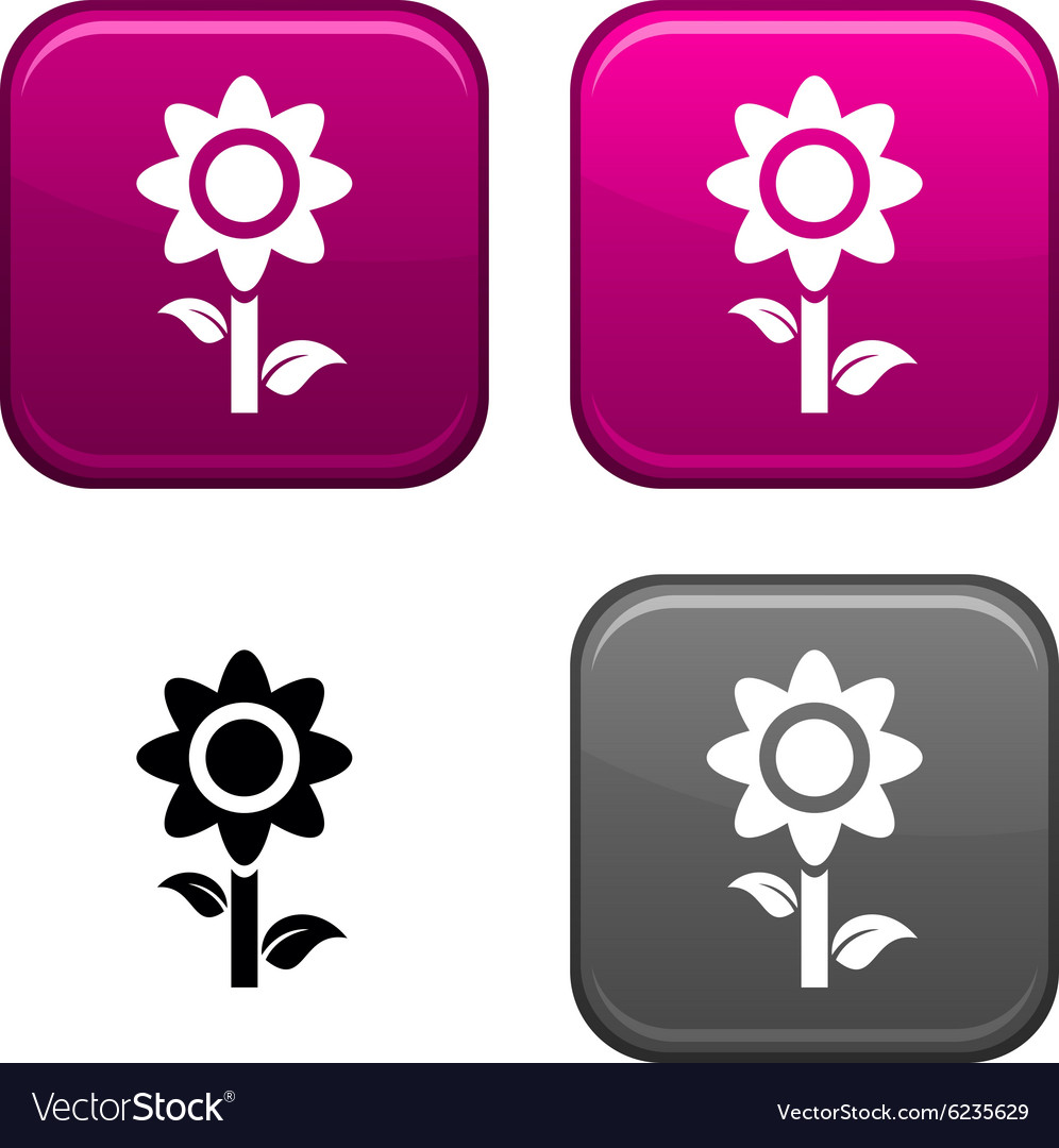 Flower button vector