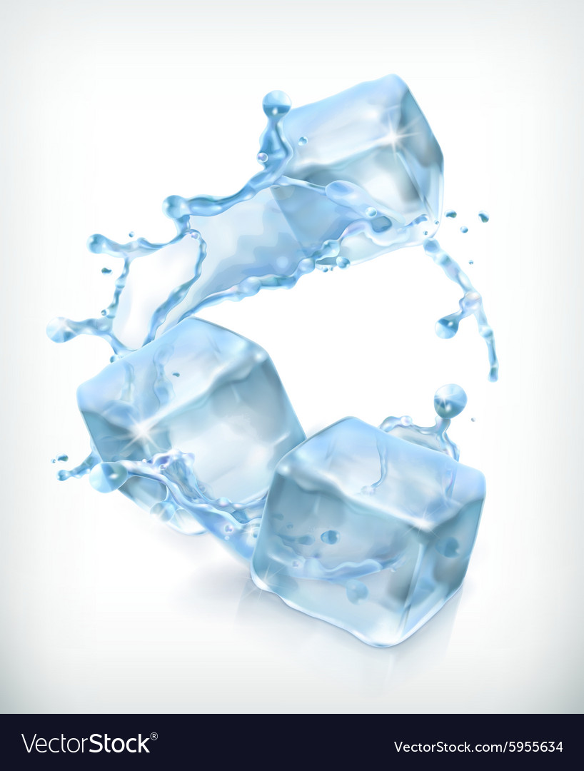 Ice cubes and a splash of water vector