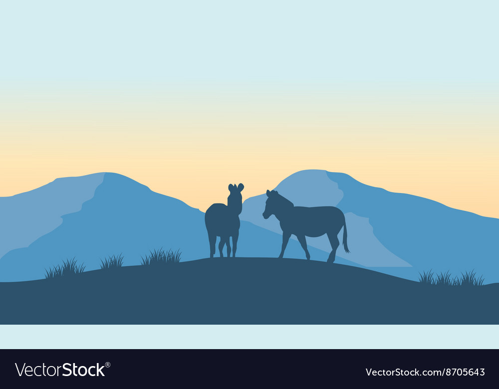 Two zebra silhouette on the mountain vector