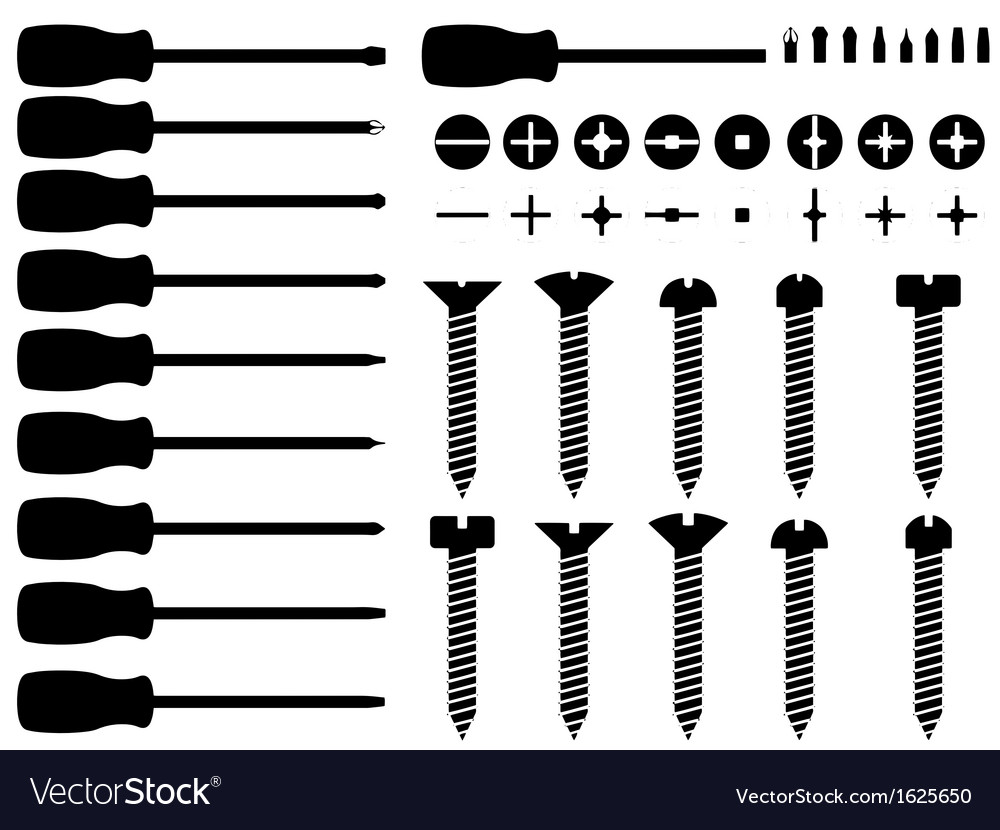 Screwdrivers and screws vector