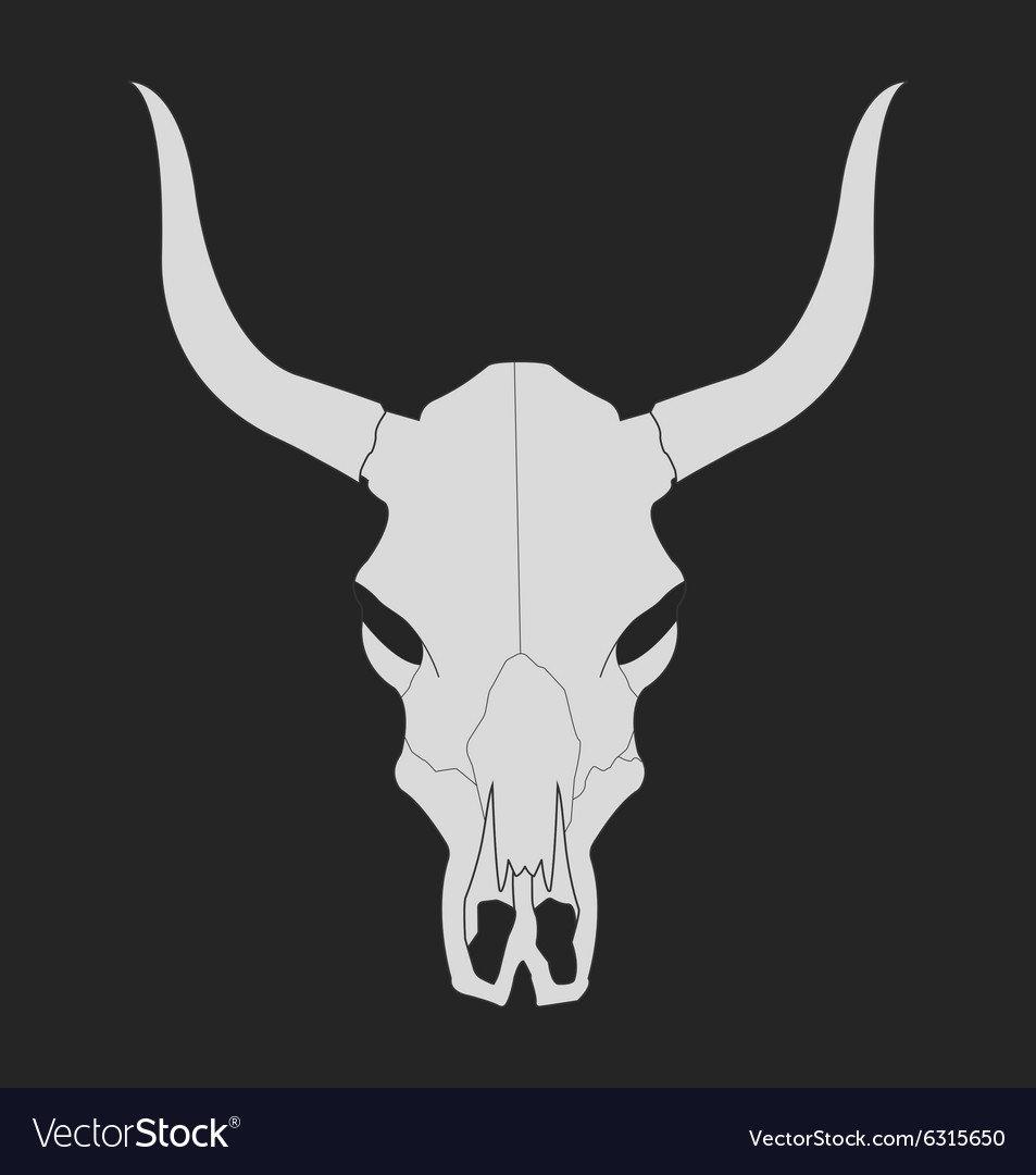 Wild west cow skull with horns chalk vector