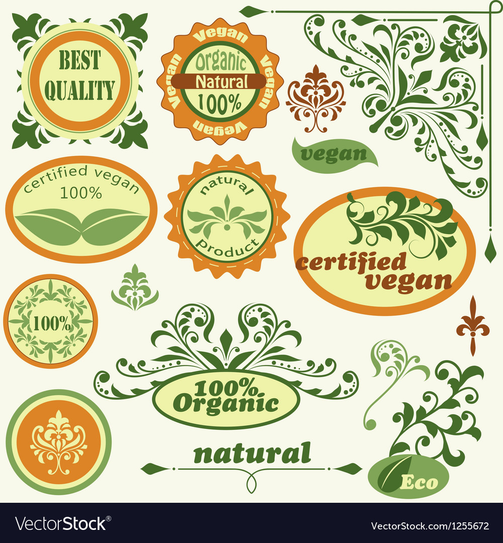 Retro style labels and floral design elements vector