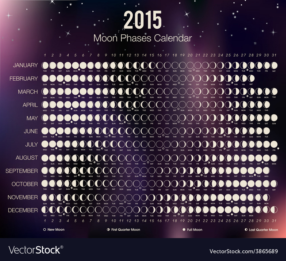 2015 moon phases calendar vector