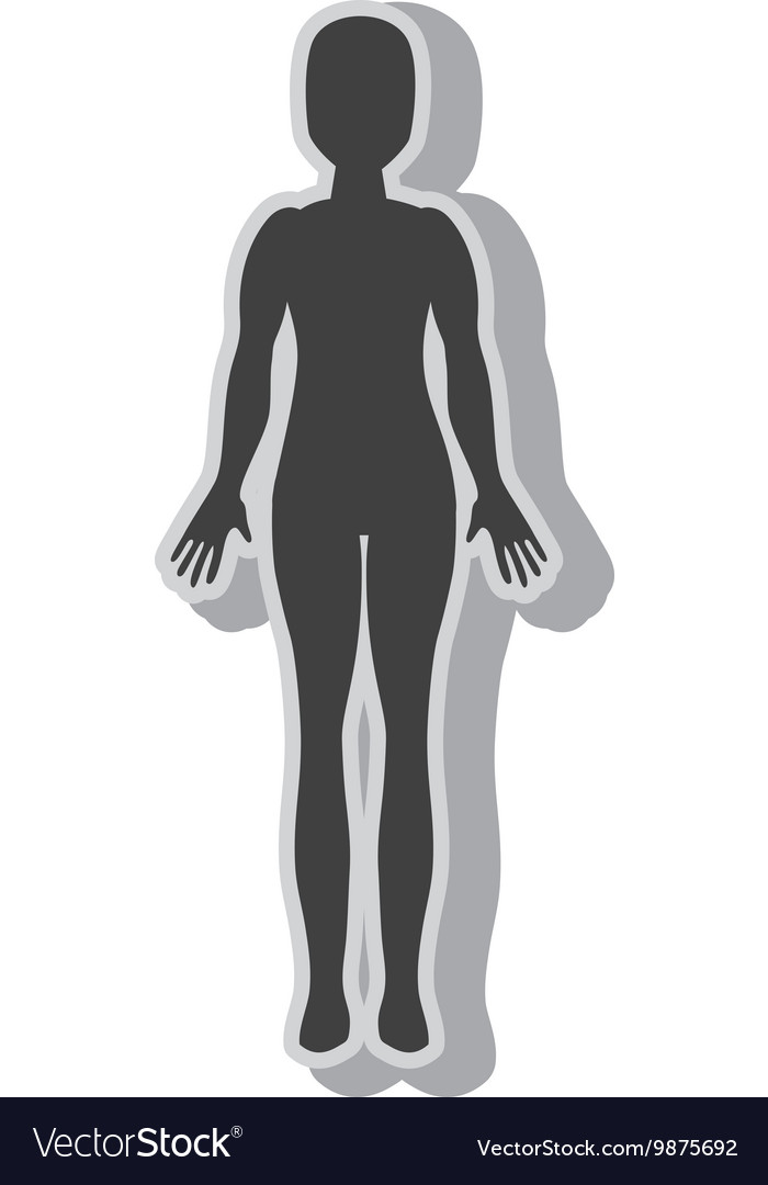 Woman body silhouette vector
