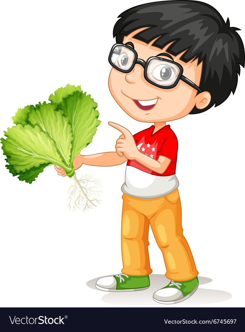 Little boy holding fresh vegetable vector