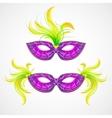 Mardi Gras carnival mask vector image