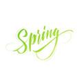 spring handwritten lettering beautiful modern vector image