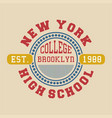 new york college brooklyn vector image