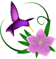 Hummingbird and lily vector image