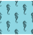 Zentangle stylized black Sea Horse blue seamless vector image