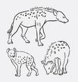 hyena wild animal sketches vector image vector image