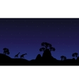 Silhouette of giraffe at night vector image