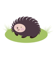 amusing hedgehog vector image