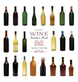 Various Types Of Wine Bottles vector image