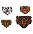 Wild bear tattoo vector image