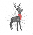 Vintage Christmas greeting card with reindeer vector image