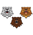 wild bear tattoo vector image vector image