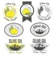 Olive oil labels and design elements vector image