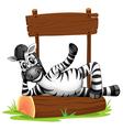 A zebra under the empty signboard vector image