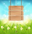 Spring morning meadow and camomiles with wooden vector image vector image