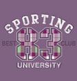 sport tshirt graphics vector image vector image