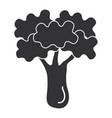 broccoli fresh vegetable icon vector image