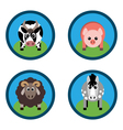 farm animals Horse sheep pig and cow on the grass vector image