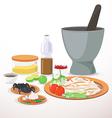 papaya salad vector image