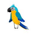 parrot cartoon bird icon vector image