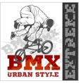 BMX rider - urban team design vector image
